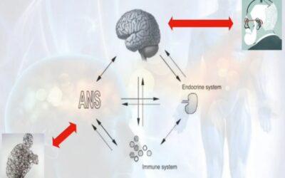 PNEI e osteopatia: lo stesso paradigma nell'impostazione di una terapia integrata