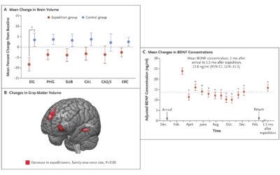 Antartide privato: la solitudine e i suoi effetti su cervello e immunità